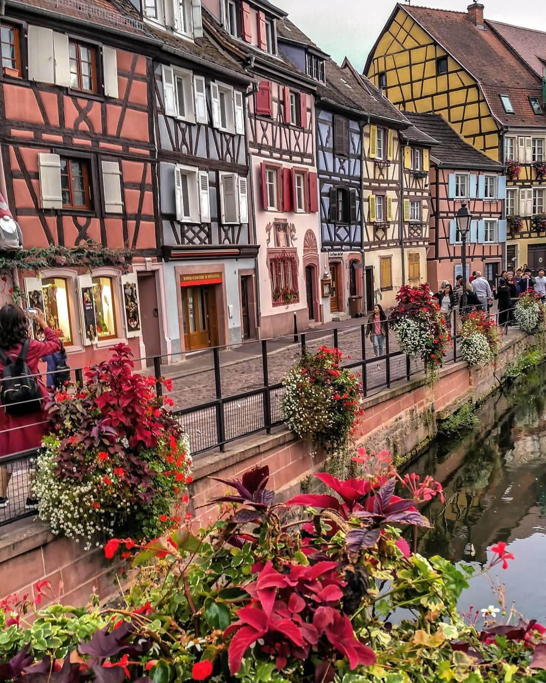 With The Beautiful Flowers From Colmar I Wish A Happy Weekend Colmar Alsace France Happy Weekend