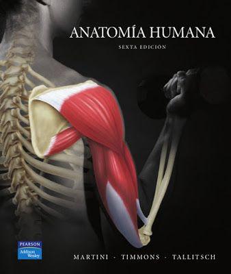Libros en PDF de Kinesiología y Fisioterapia: Anatomía Humana, 6ta ...