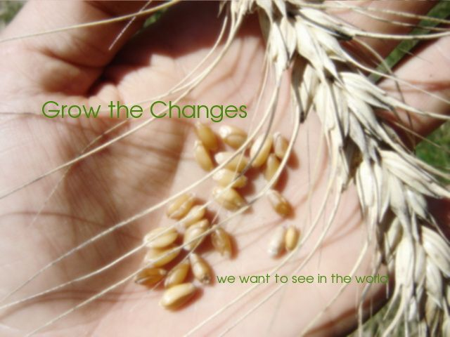 Grow the Change    No longer posting, but a valuable resource.
