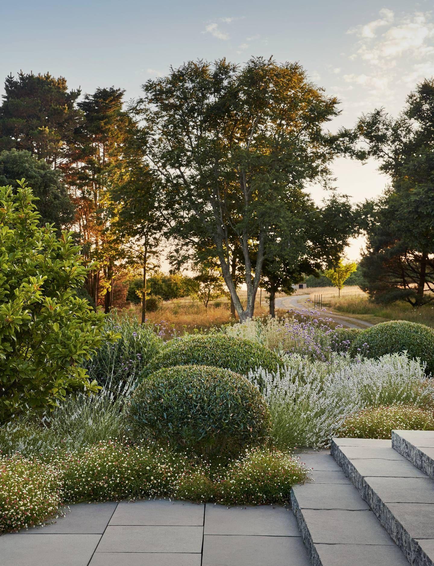 Coastal Gardens Garden Landscape Design Australian Garden Natural Garden Garden Inspira In 2020 Garden Landscape Design Coastal Gardens Landscape Design