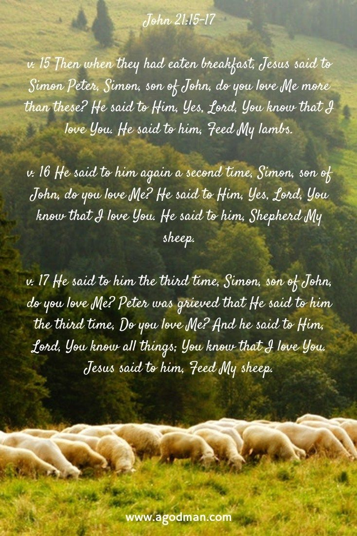 Pin on Holy Bible Recovery Version Verses and Footnotes