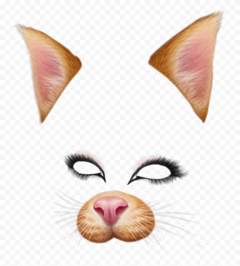 Snapchat Cat Face Filter Ears Eyes Nose Png Image Snapchat Filters Png Snapchat Filters Cat Face