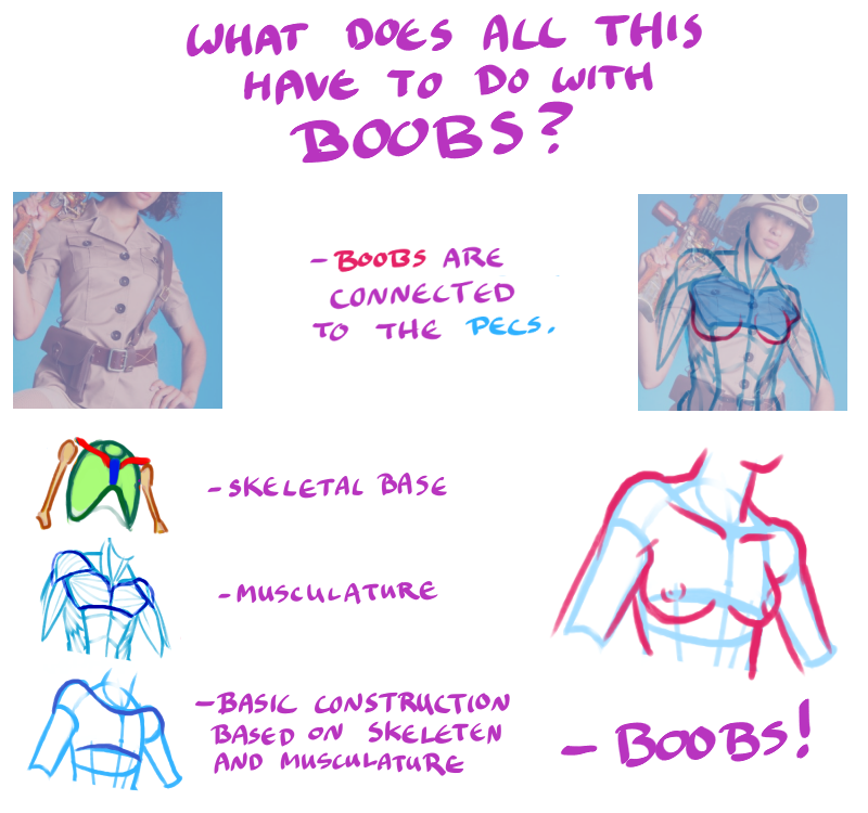 Tips And Techniques For Drawing Boobs - Page 3 -7724