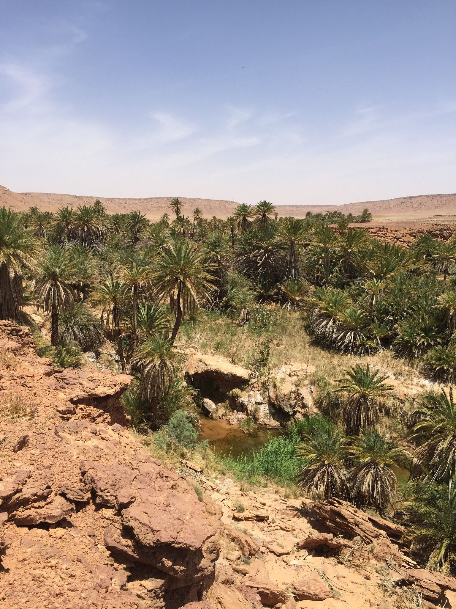 Region Erfoud #erfoud #maroc #morocco