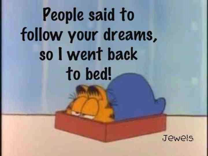 Dreams Funny Quotes Inspirational Quotes Garfield Quotes
