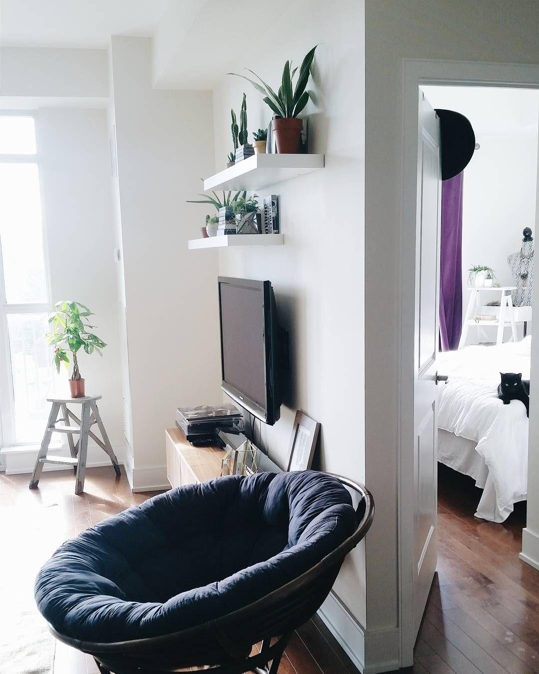 Shelves Above Tv Shelf Pinte