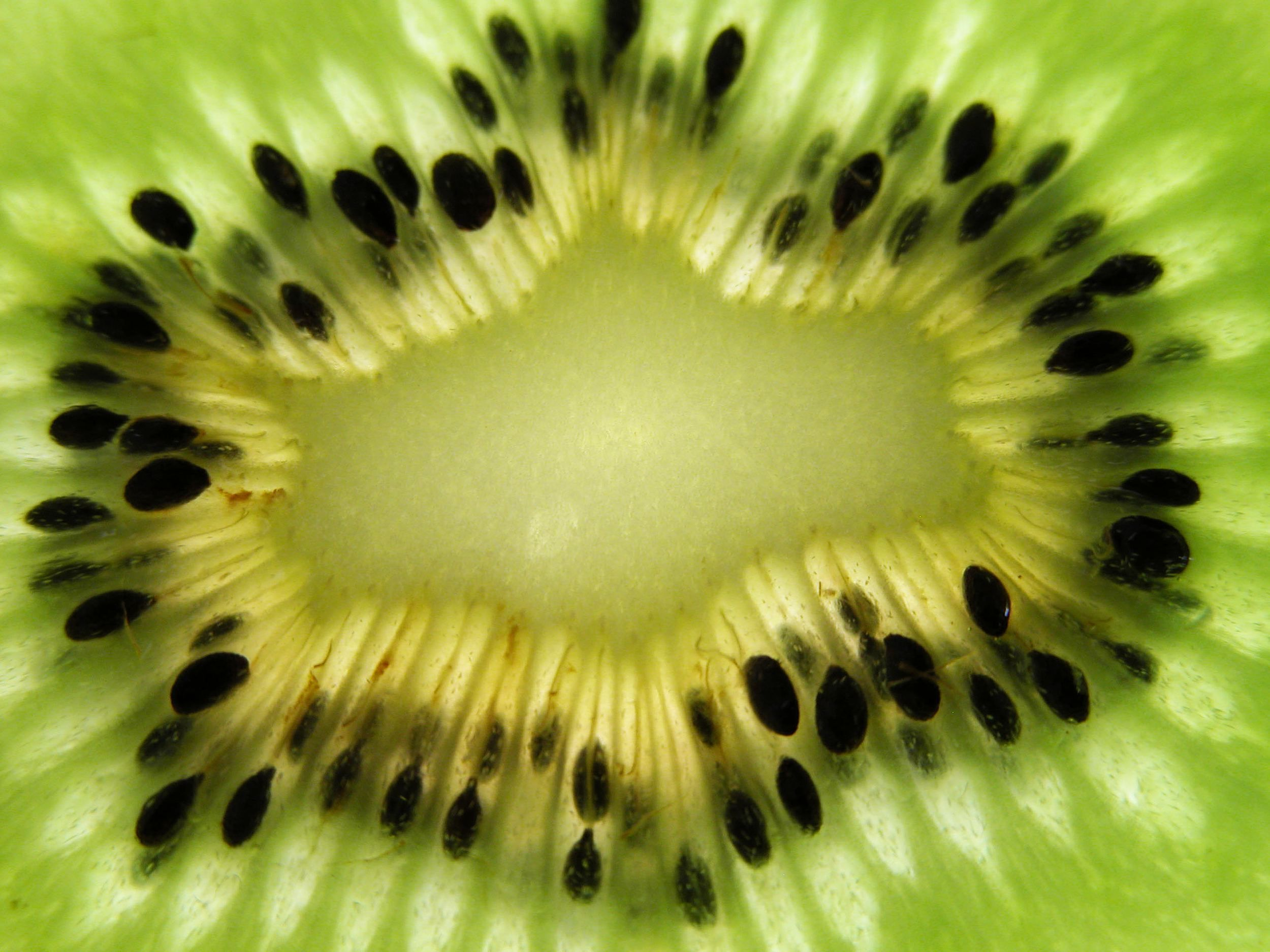 Inside Kiwi Fruit Wallpaper And Photo Download By Photosof Org Beautiful Macro Photography Macro Photography Kiwi Wallpaper macro pear fruit branch leaves