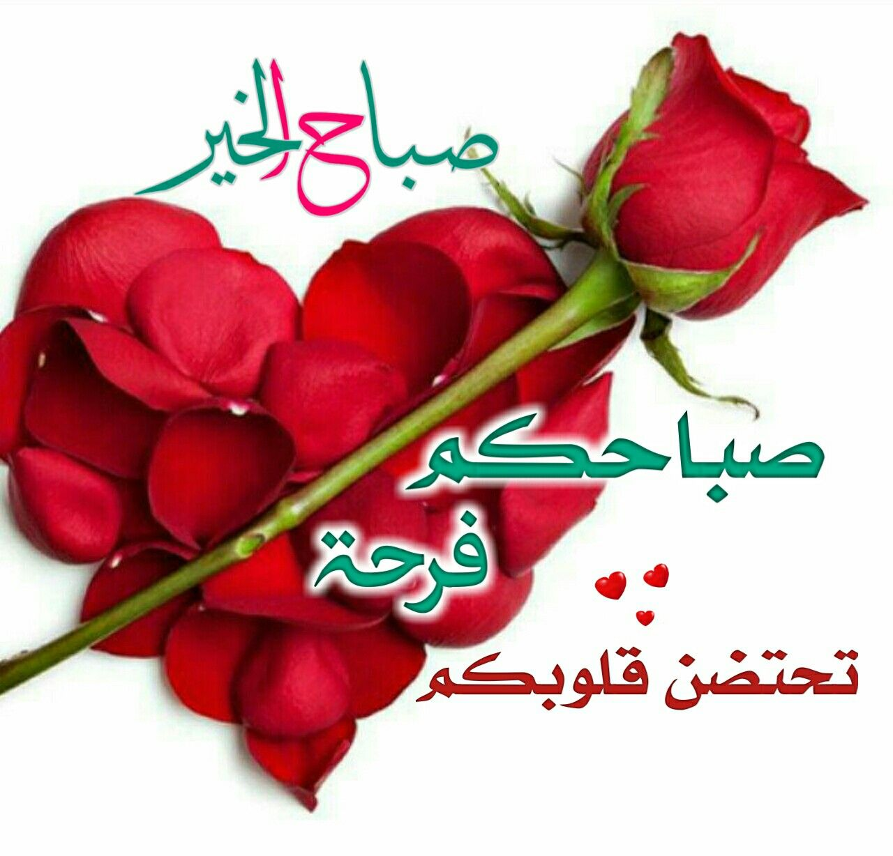 Pin By Amir On صباح الخير Good Morning Gif Morning Gif Good Morning