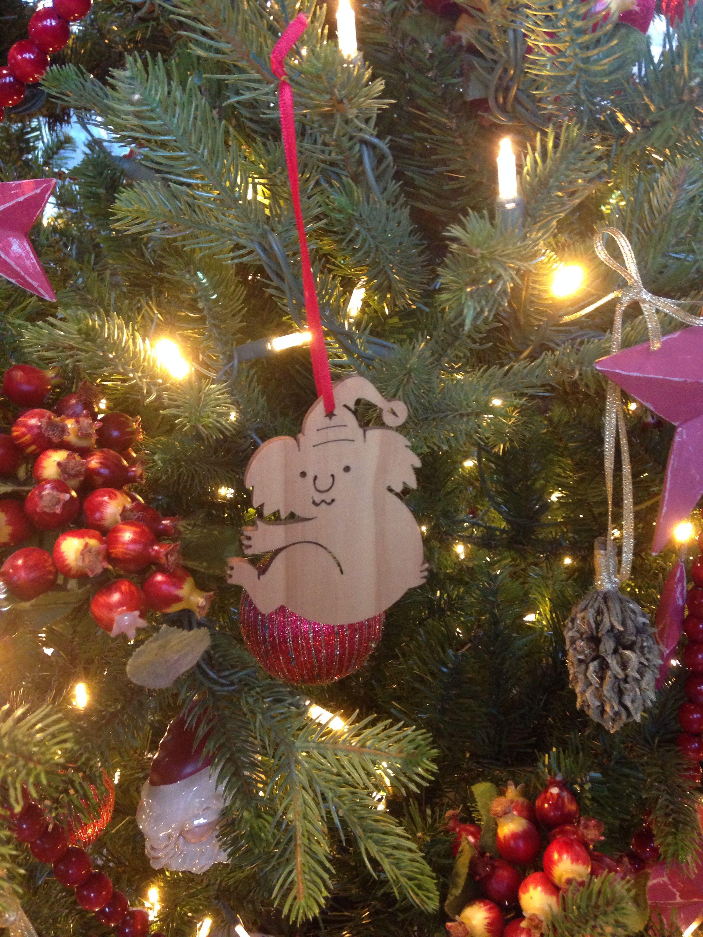 Australian Christmas tree 🎄 Australian christmas