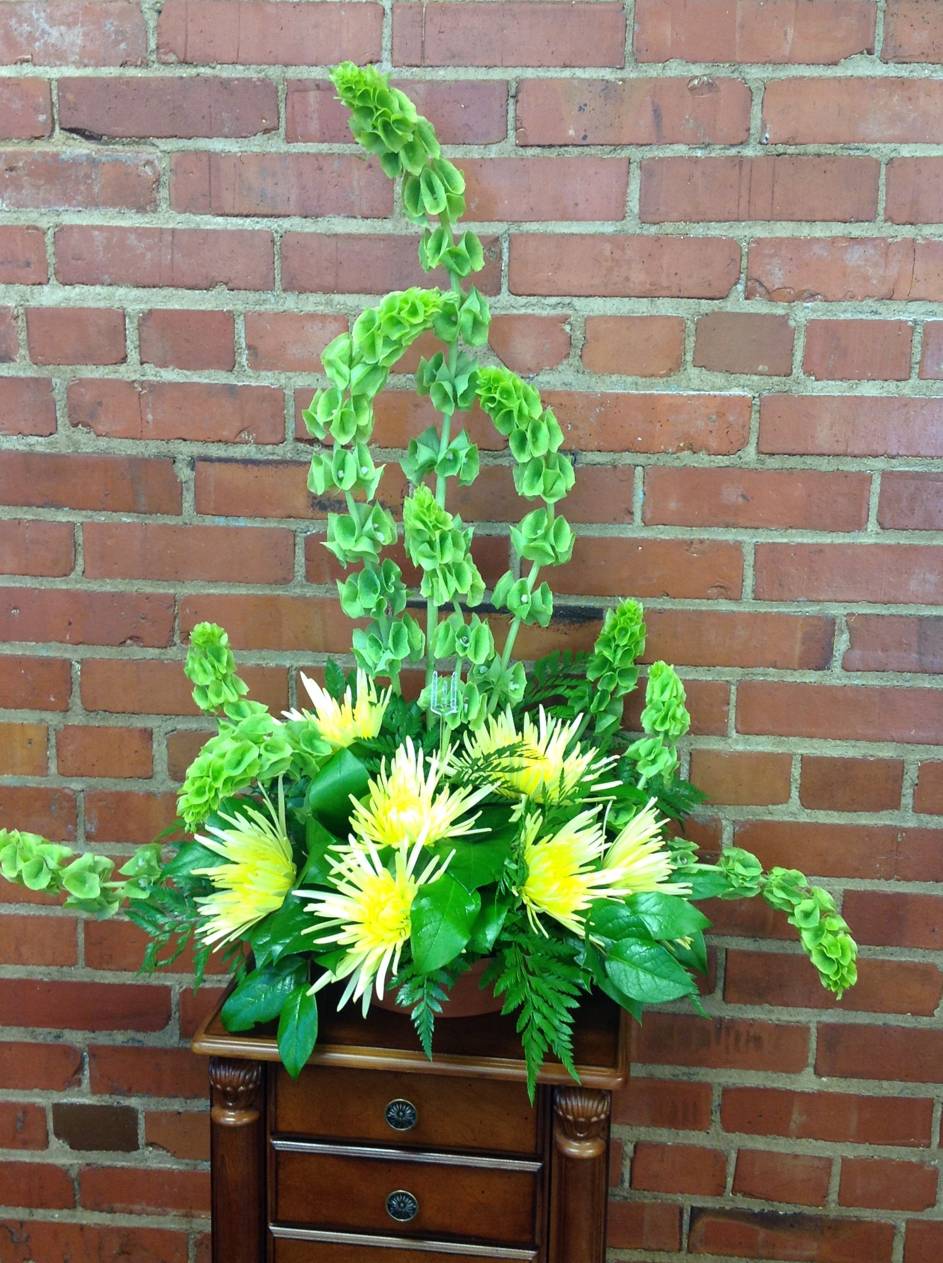Bells Of Ireland With Yellow Spider Mums Bunga