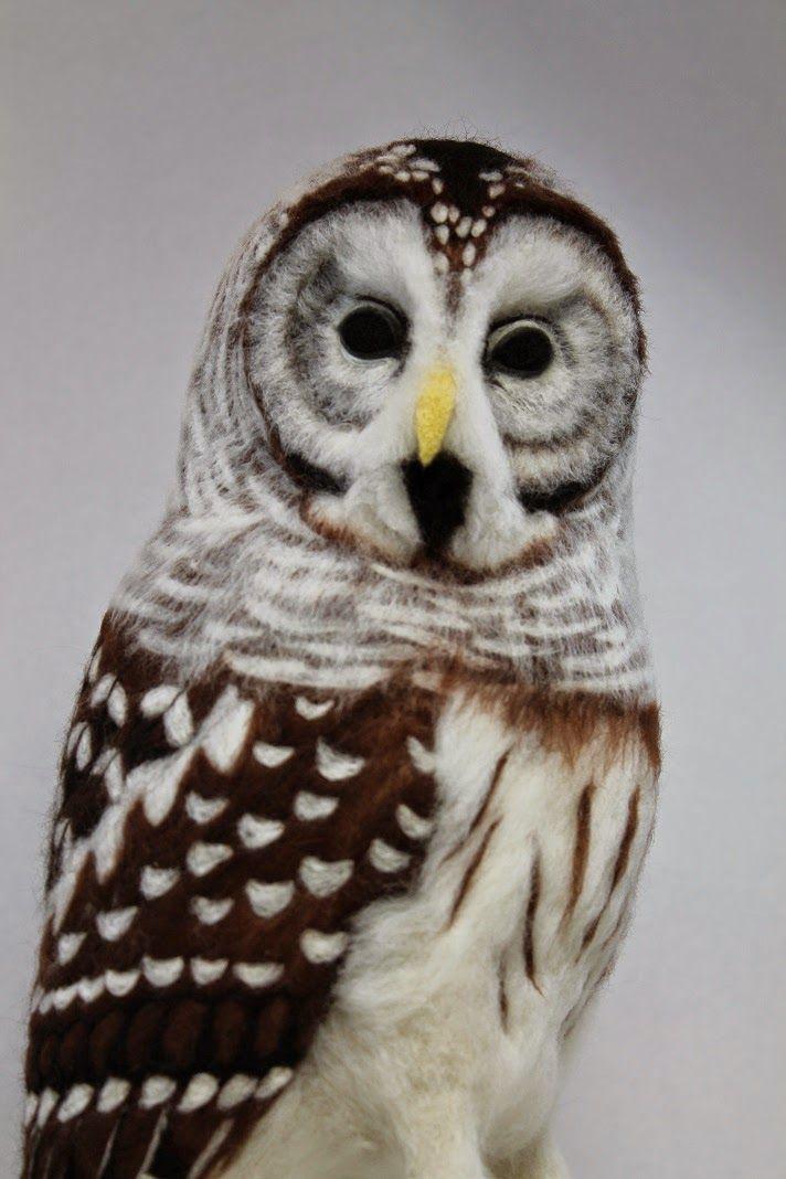 Kiyoshi Mino // Needle Felted Animals: Winter 2013-2014, barred owl