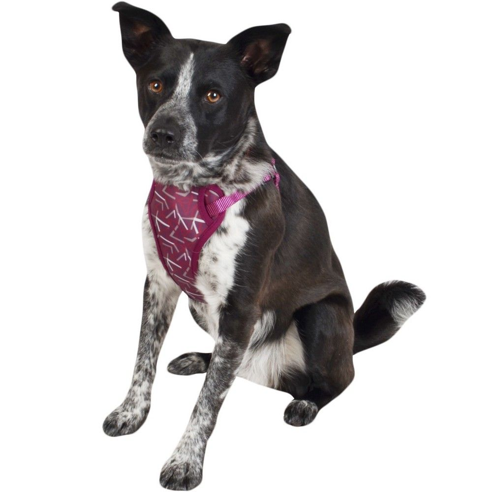 Cat Dog Harness Plum Medium Boots Barkley Dogs Your