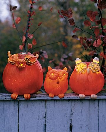 Owl Pumpkins  wwwmarthastewart/274309/outdoor - martha stewart outdoor halloween decorations
