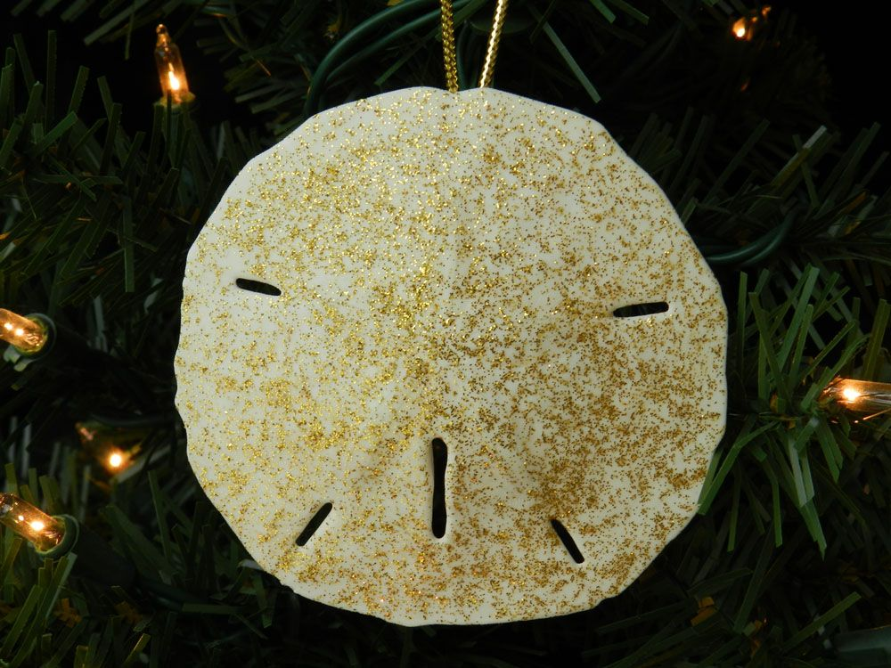 """Gold Sand Dollar Christmas ornament: These sparkling hand painted sand dollars are shining and ready for a place on your tree.  These gold sand dollars glisten with the lights and add that extra something your tree has been longing for.  These Sand Dollar Christmas ornaments are hand painted in the US, measure approximately 3.5"""" and are sold as a set of 4."""
