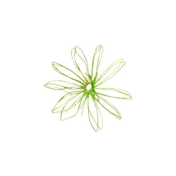 скрап_клипарт на Яндекс.Фотках ❤ liked on Polyvore featuring flowers