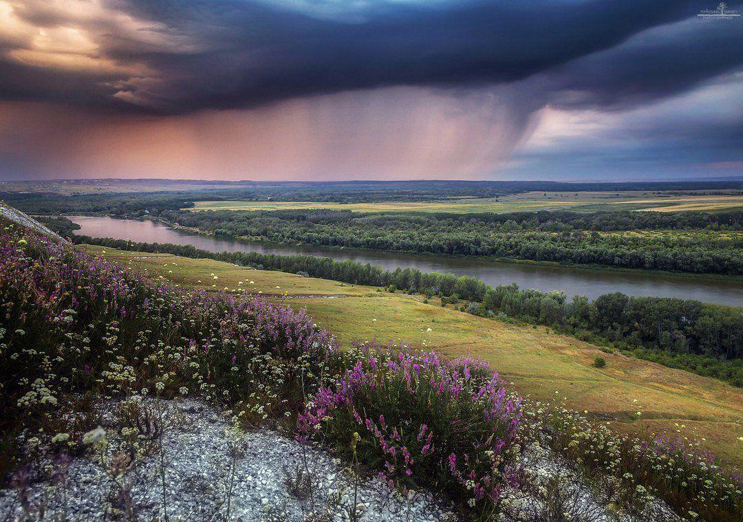 фото и картинки волгоградской области помидорки