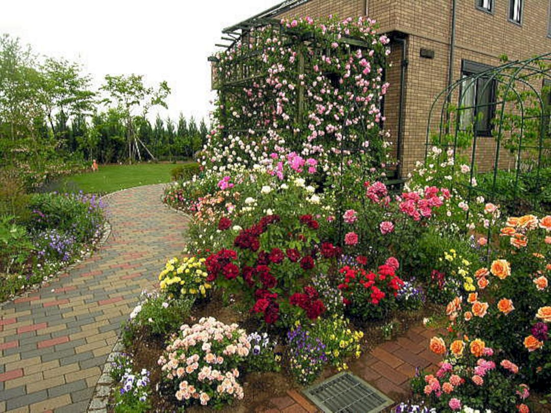 Epic 24 Small Rose Garden Design Ideas For Home Yard More