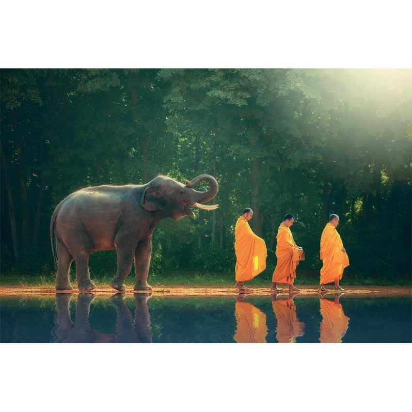 Tableau moine bouddhiste 4 aad2546a1703608fff9ac36793c44e38