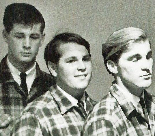 Brian, Carl, and Dennis Wilson   The beach boys, Dennis wilson, Singer