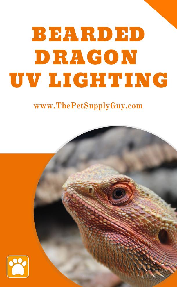 Best Uvb Light For Bearded Dragon The Pet Supply Guy In 2020 Bearded Dragon Bearded Dragon Habitat Dragon