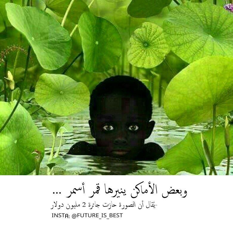 أنا م عتم يا صديقي ولست موطنا آم نا كما تظ ن ولاأقدر أن أكون لك الم نفى في هذه الحياة ف أنا أغرق في حزني ك ل Plant Leaves Pics Lsu