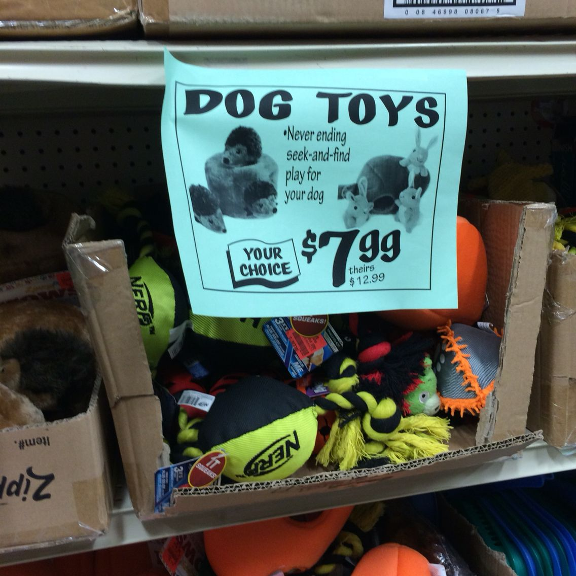 When shopping doggie stuff always grabs my eye!