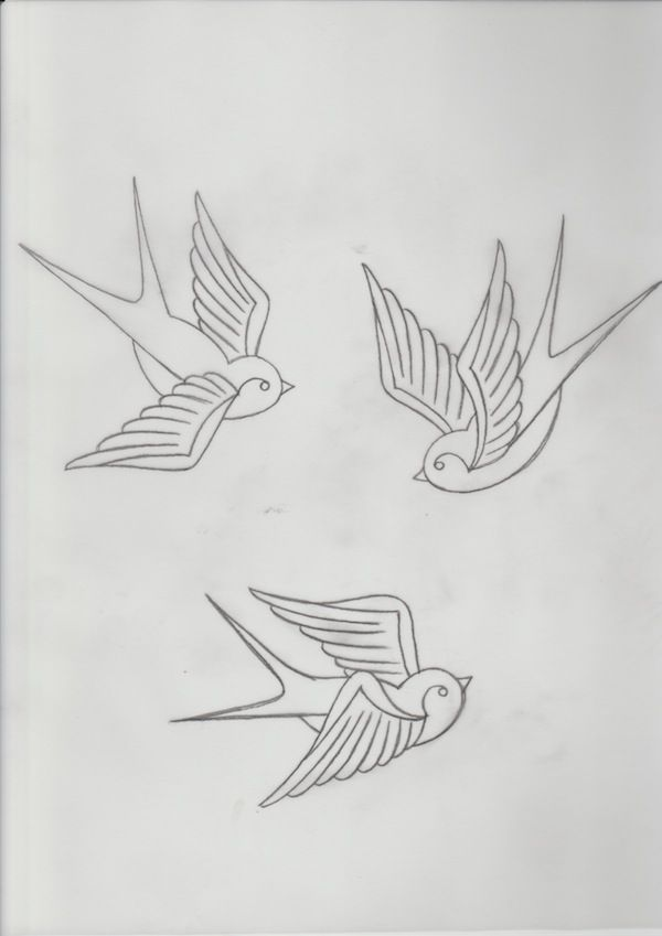 Swallow Tattoo Line Drawing : Three swallows all in one design drawing pinterest