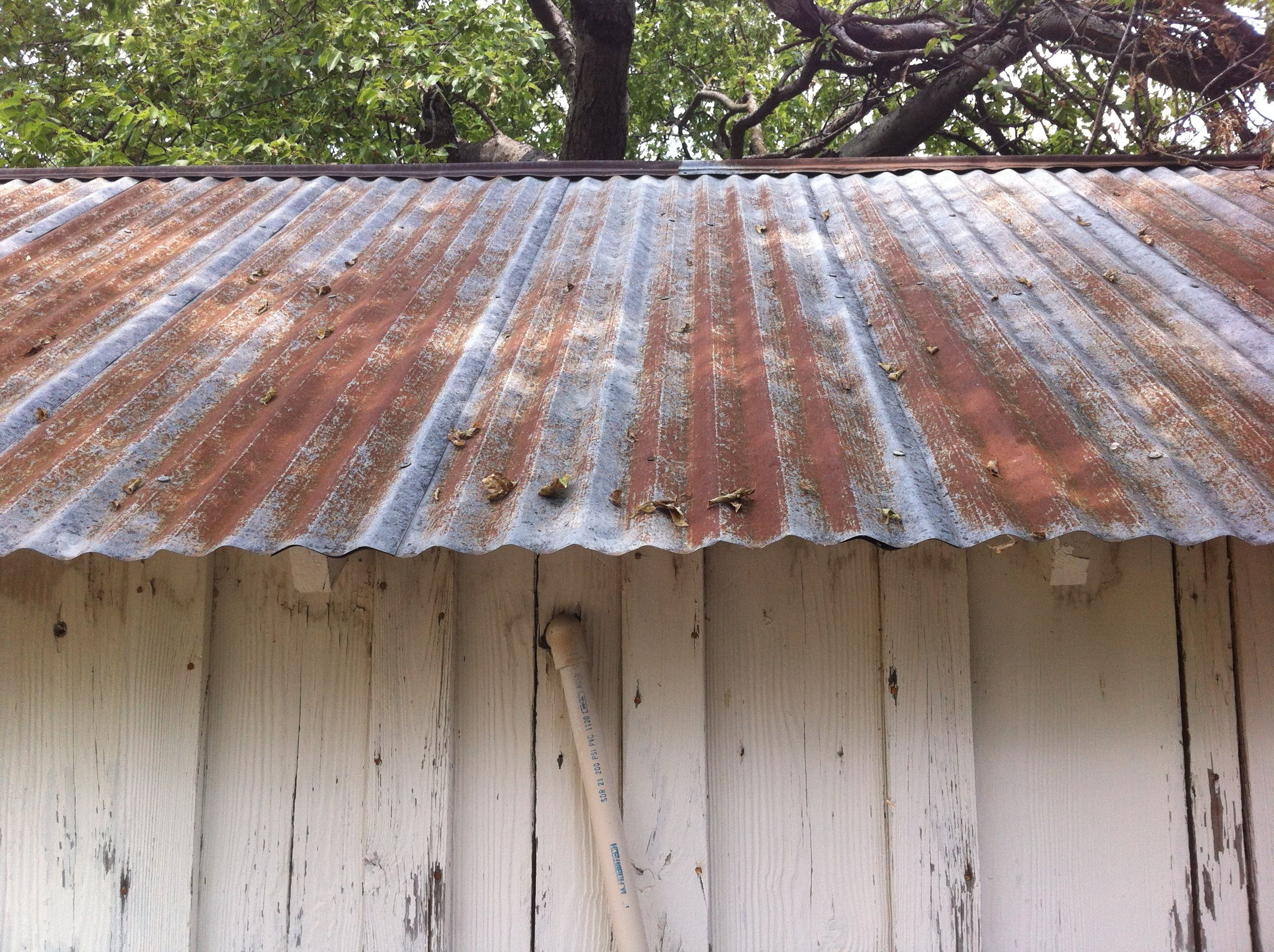 Lovely Tin Shed Roof