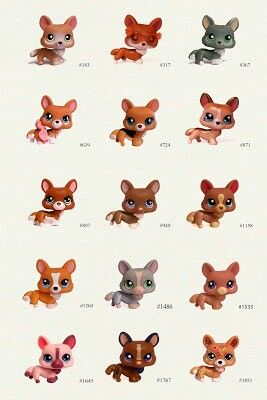 All Littlest Pet Shop Corgis And Their Numbers Lps Lps Pets
