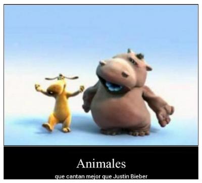 animales chistosos cantando