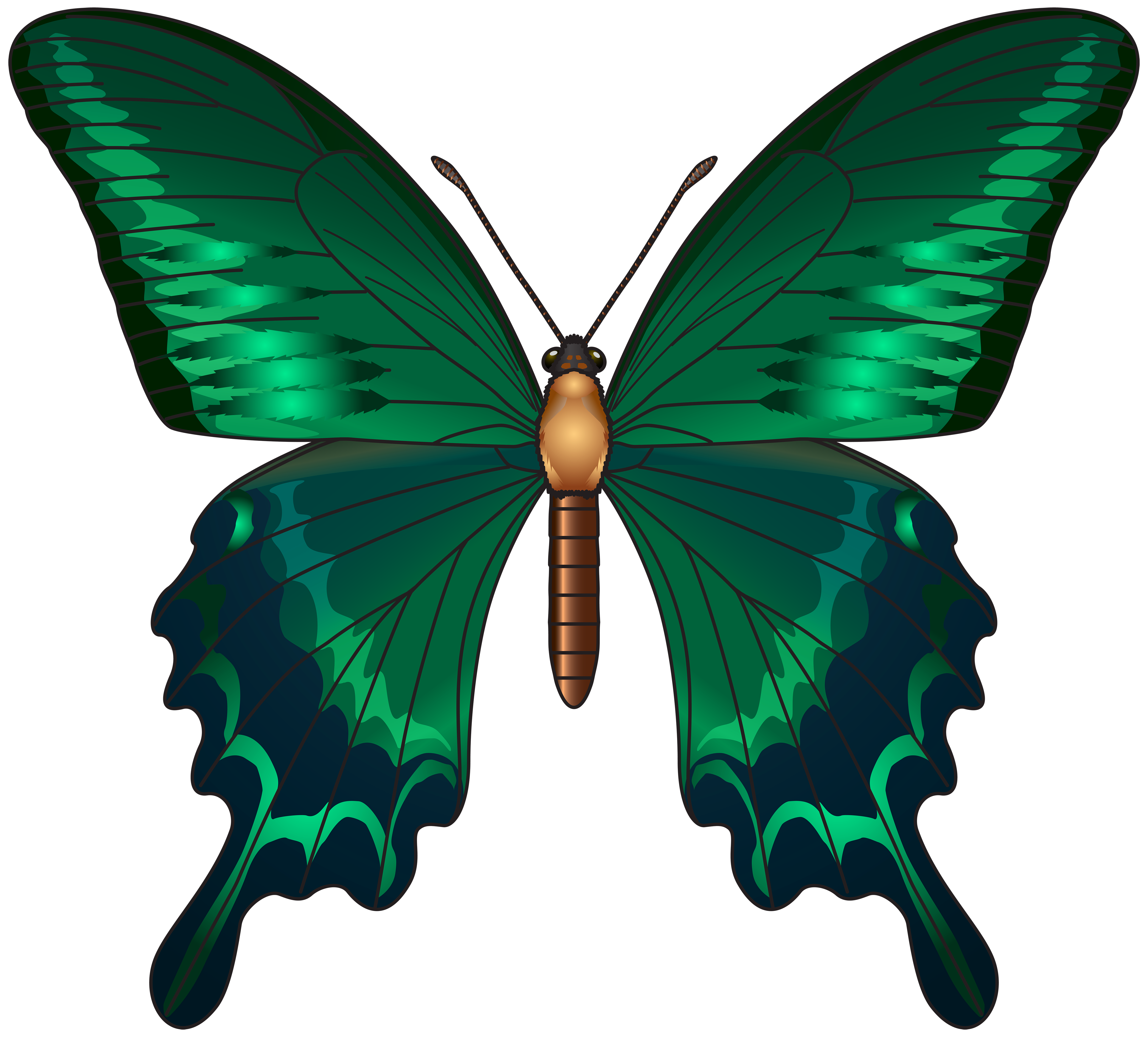 Green Butterfly Png Clip Art Image Gallery Yopriceville High Quality Images And Transparent Pn Butterfly Art Painting Green Butterfly Butterfly Garden Art