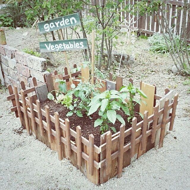 ベランダ キッチン お庭で憧れの自給自足生活 家庭菜園 実例