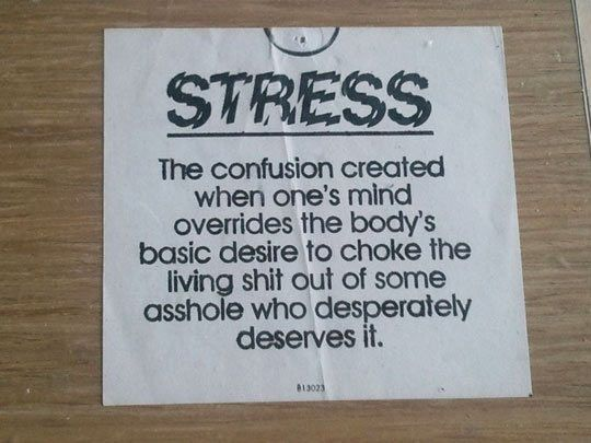 The best definition of stress…