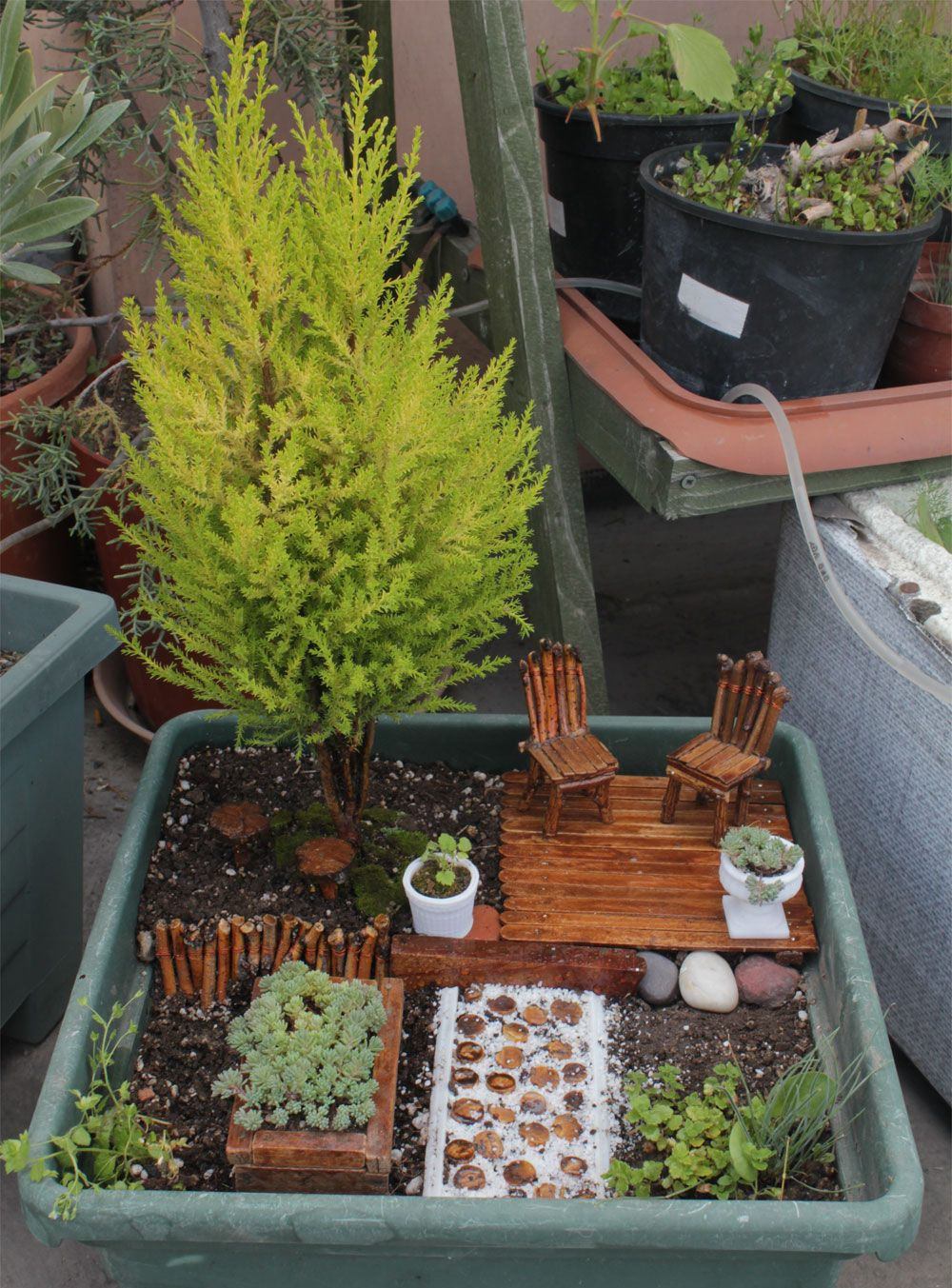 miniature garden park | fairy gardens | pinterest | garten, mini