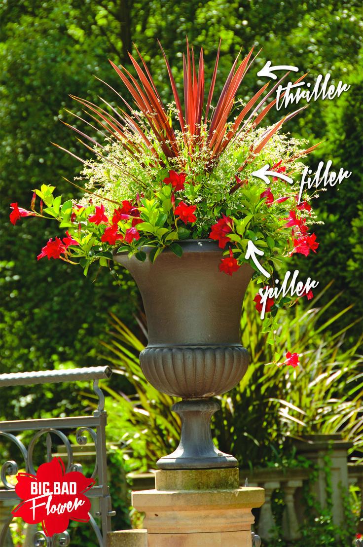 The gardener online flower design pinterest container