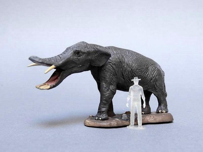 Platybelodon & Amebelodon • Lazer Horse