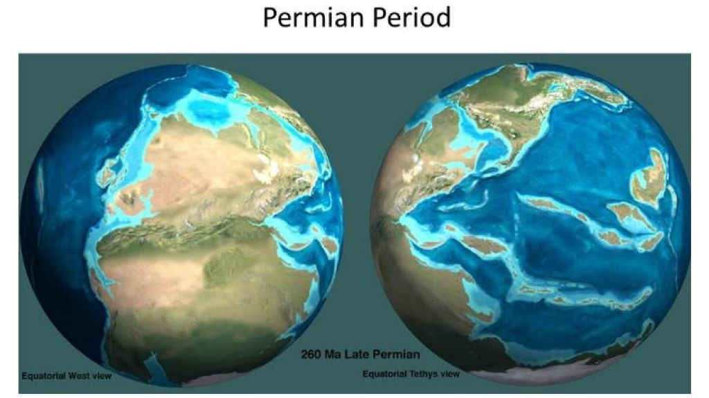 late permian period