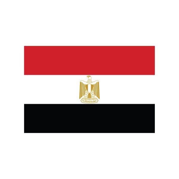 Egyptian Flag By Melissa Iaconis Via Behance Egyptian Flag