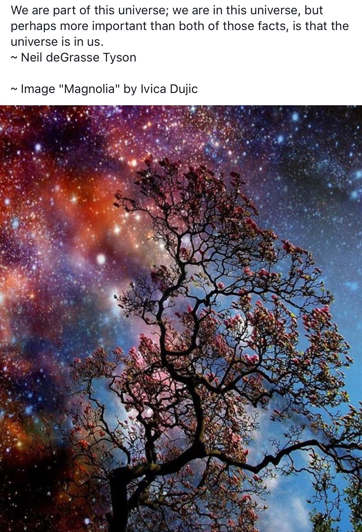 Pin by Bohemian Bex on stardust Nature, Night skies, Photo