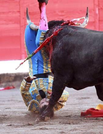 Spain, bullfighter gored in Bullfight Bilbao