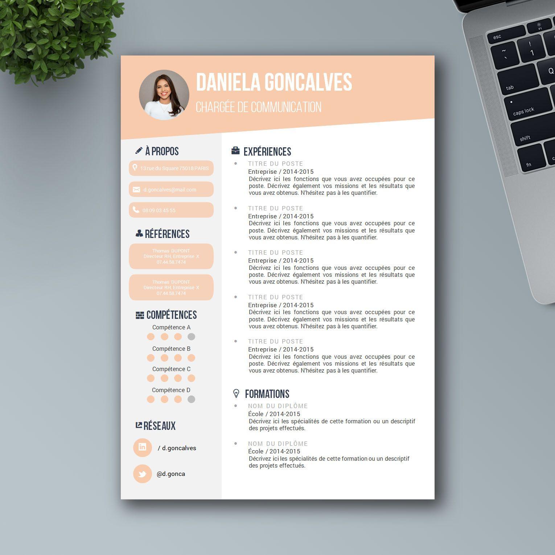 Modèle de CV 2019 / Resume Template 2019 Exemple cv