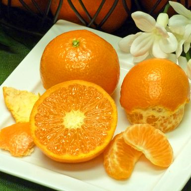 Mandarin Orange Tips and Hints