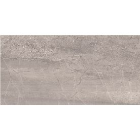 Style Selections Skyros Gray Glazed Porcelain Indoor