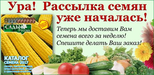 купить семена сады россии почтой