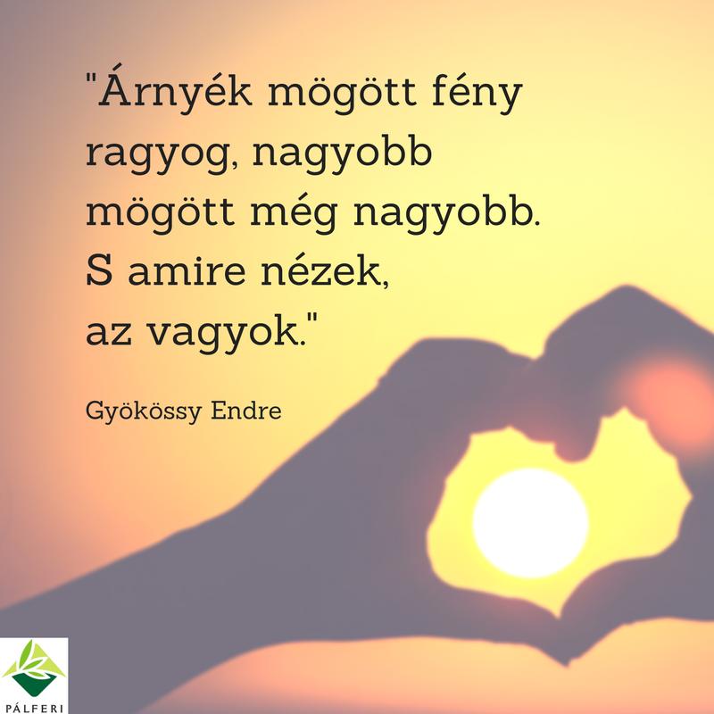 gyökössy endre idézetek Gyökössy Endre idézet a hozzáállásunkról. A kép forrása: Pálferi