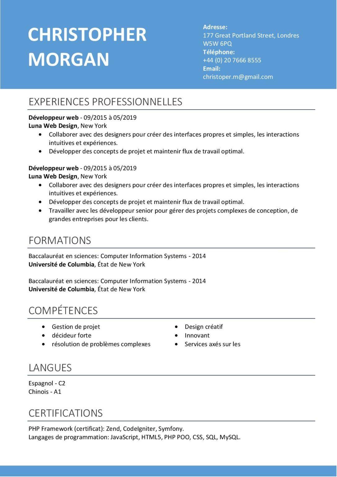 modèle de CV classique Word gratuit cvgenie.fr en 2020