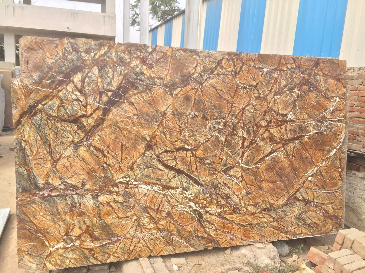 Best Rainforest Brown Marble Slabs Tiles Price Manufacturer India in 2021 |  Tiles price, Marble slab, Brown countertop