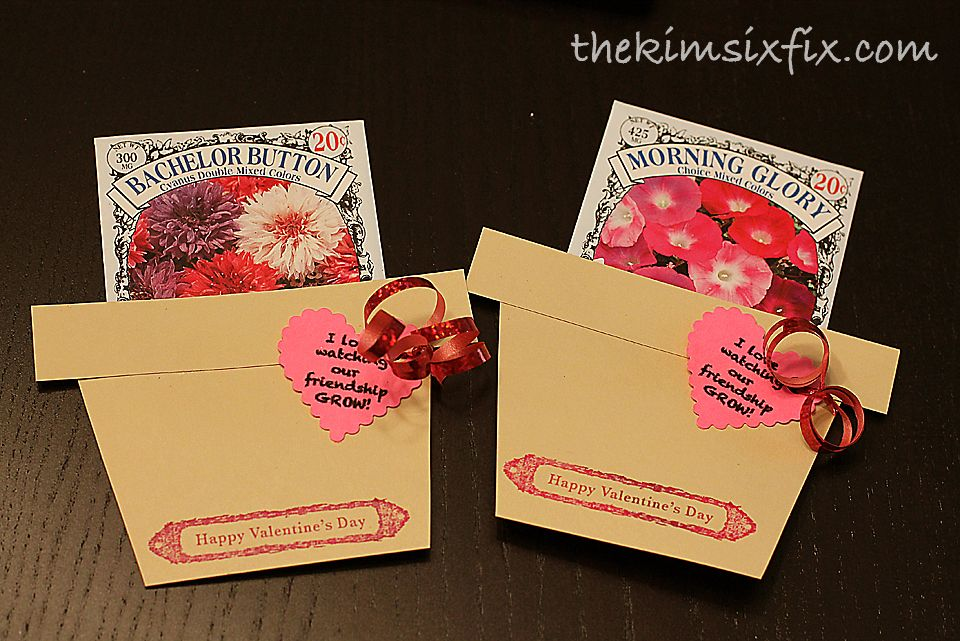 Inexpensive Flower Seeds Valentines.  A great candy-free school option, and really easy to make.