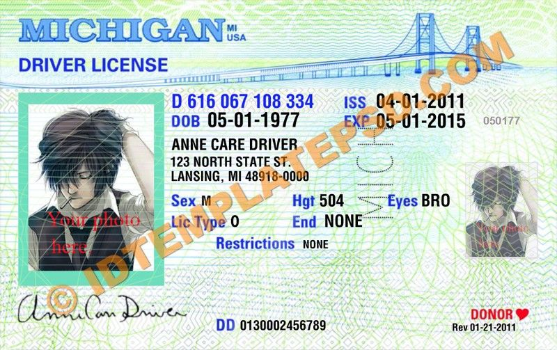 This is michigan usa state drivers license psd