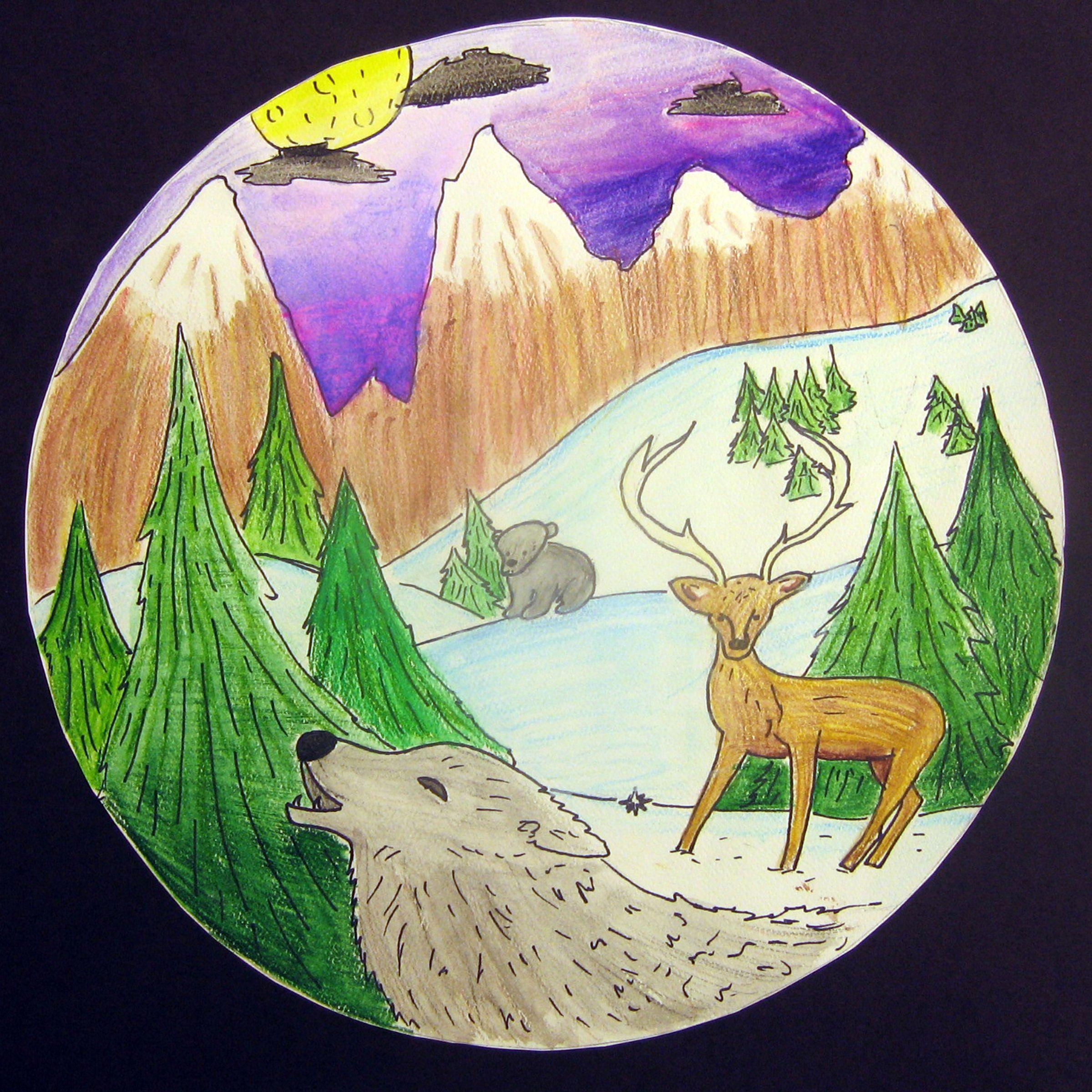 Biome Illustrations Biomes Illustration Forest Art [ 2400 x 2400 Pixel ]